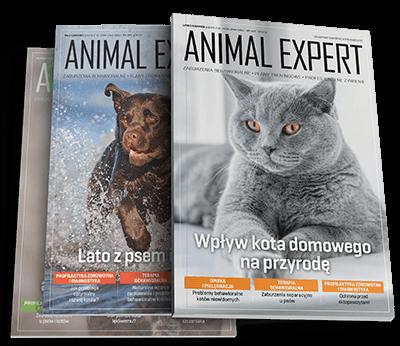 Poznaj magazyn Animal Expert